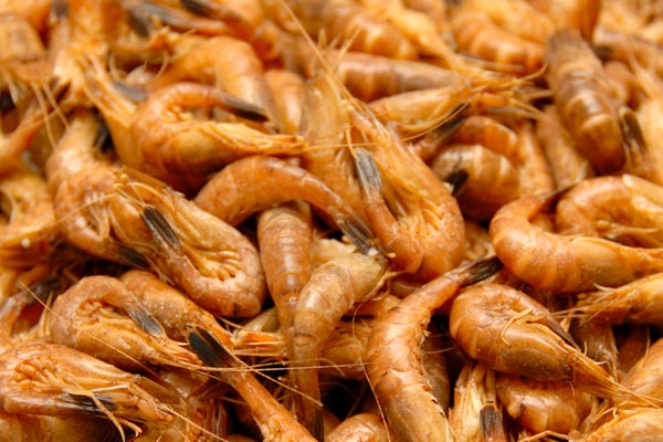 Smoked North Sea shrimp with really great taste